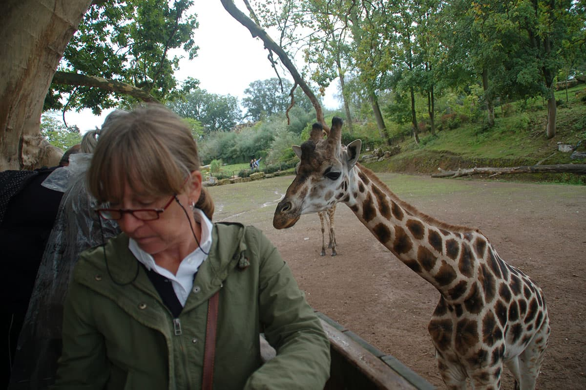 giraf01